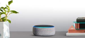 Alexa y google home